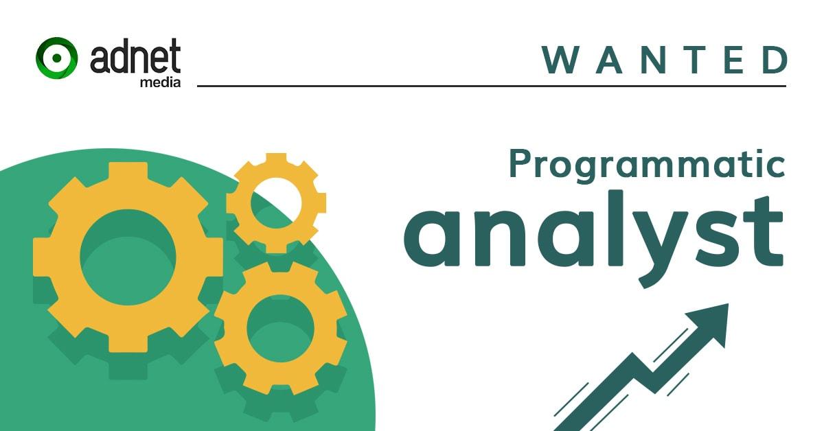 Job programmatic analyst